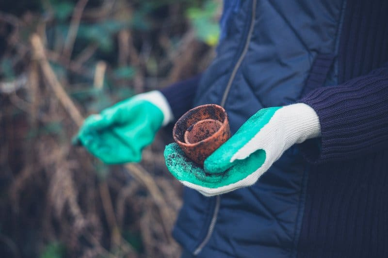 Can You Use Garden Soil for Potted Plants