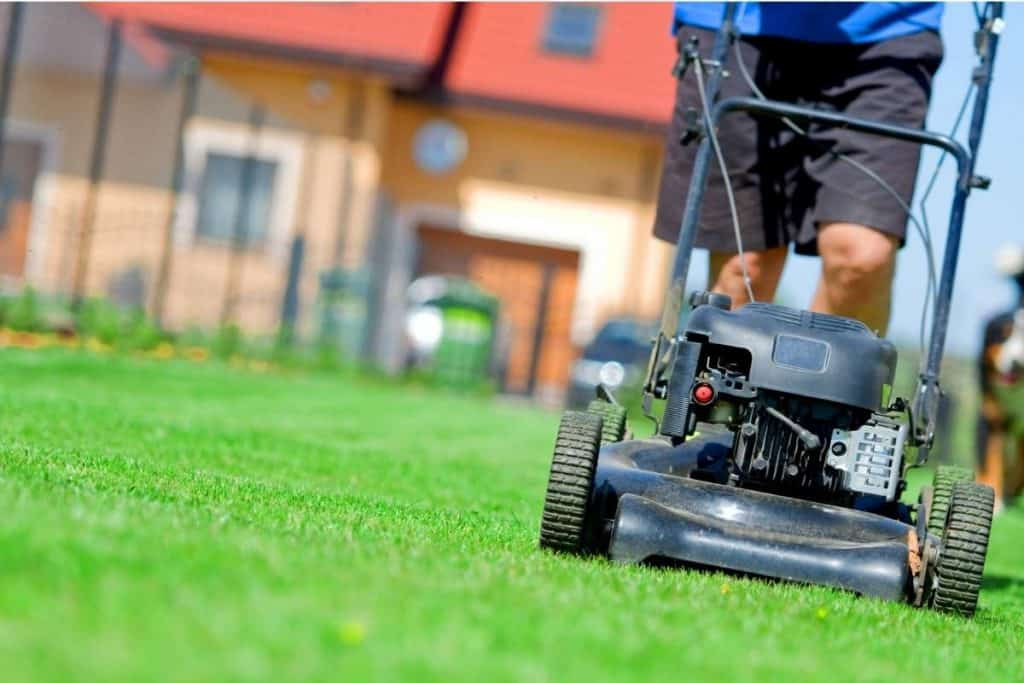 Does Home Depot Trade in Lawn Mowers