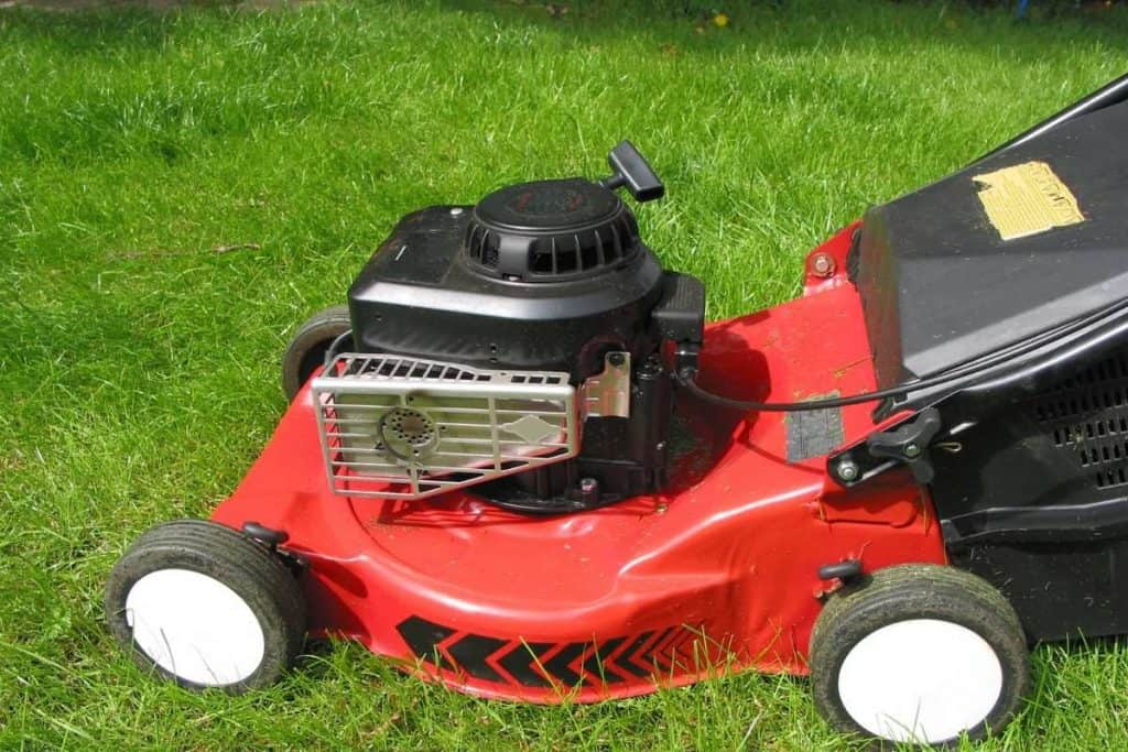 How Much Gas Does A Lawn Mower Use?