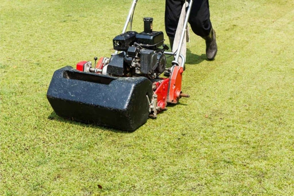 What Type of Gas For Lawn Mower