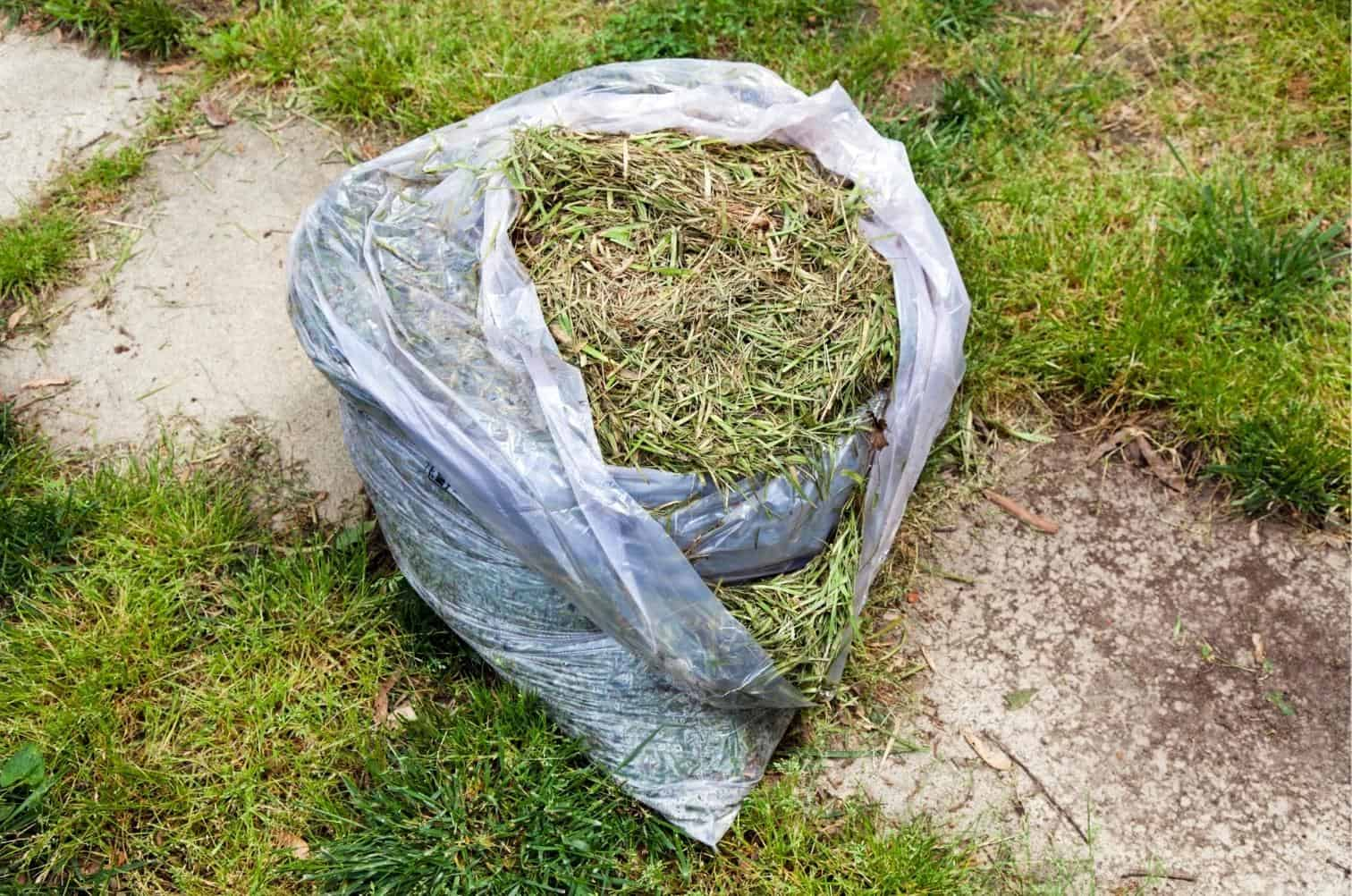 Are Grass Clippings Good for Your Lawn
