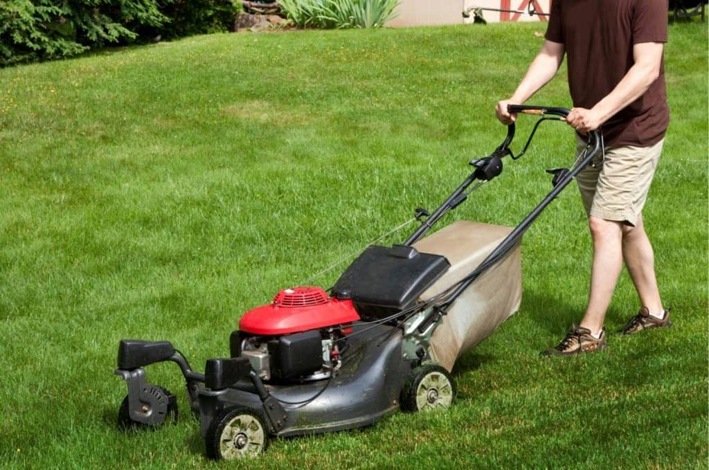 How Much Gas Goes in a Push Lawn Mower