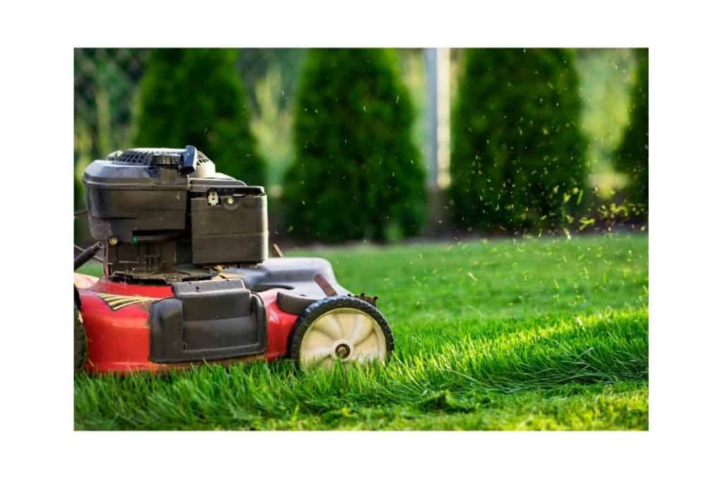 How to Get Rid of Old Lawn Mower
