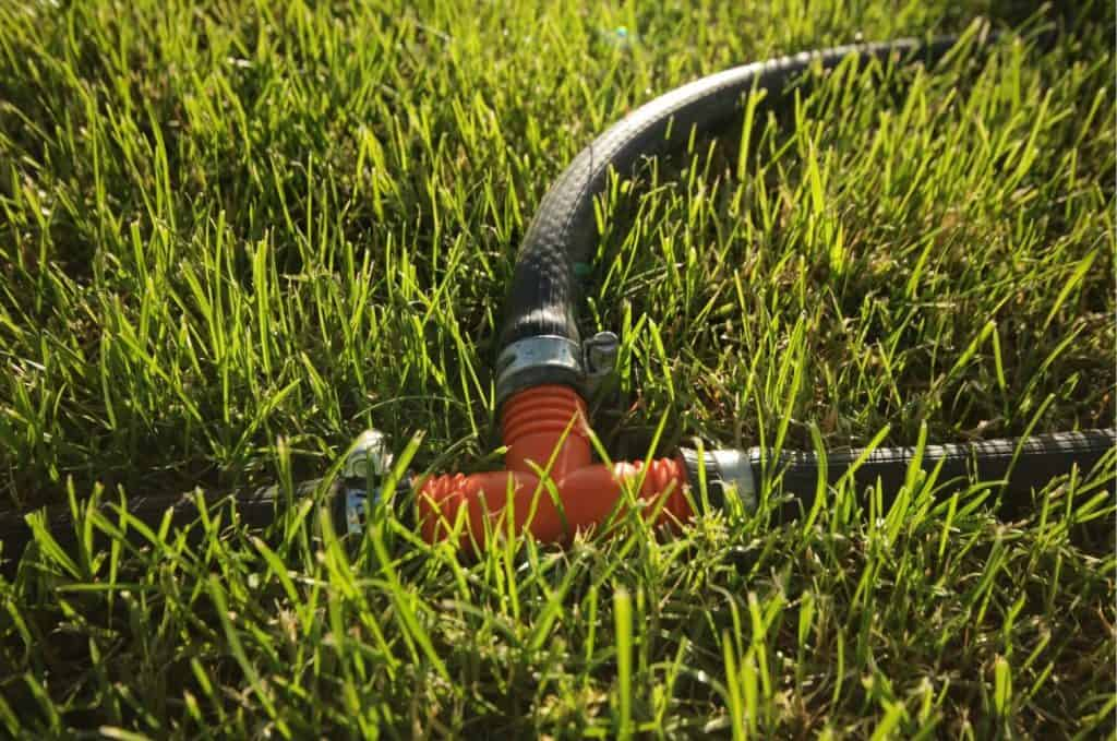When is a Good Time to Stop Watering Your Lawn
