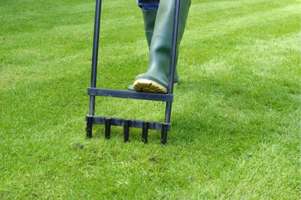 When to Aerate Your Lawn in North Carolina