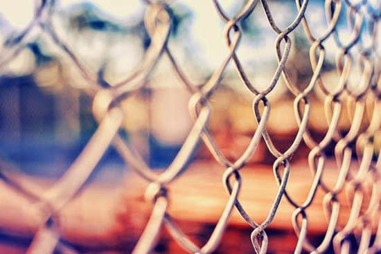 Is Chain Link Fence Cheaper than Wood?